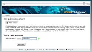 databasewizard1